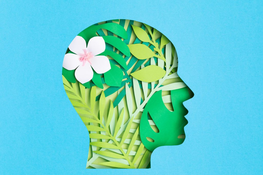 papercut of a head with leaves, representing mental health