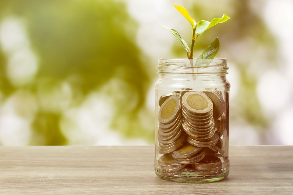 jar of coins with a plant growing from it