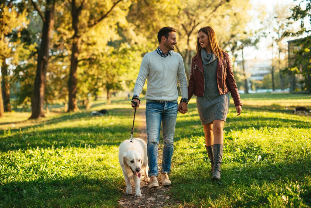 couple walking in a park with a dog